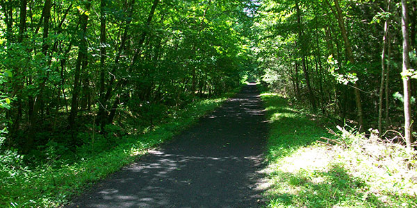 Virginia creeper trail photo in the summer
